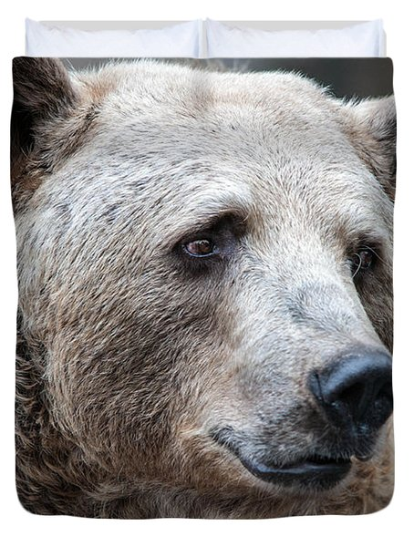 Bear Necessities Duvet Cover