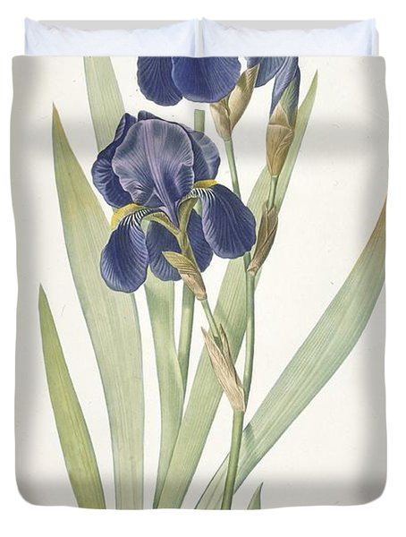Bearded Iris Duvet Cover by Pierre Joseph Redoute