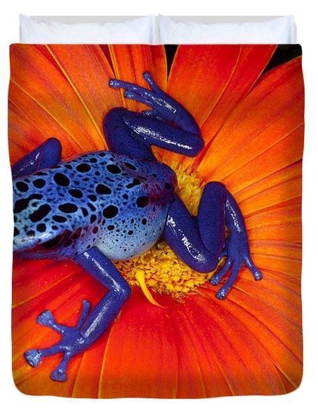 Beautiful Blue Frog Duvet Cover
