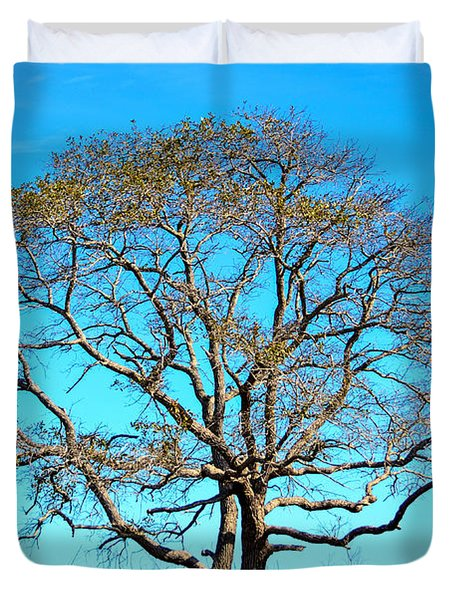 Beautiful Branching Duvet Cover by Debra Martz