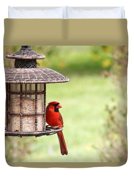 Beautiful Cardinal Duvet Cover by Trina  Ansel