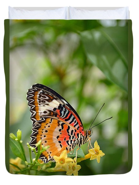 Beautiful Common Lacewing Butterfly Duvet Cover by Eva Kaufman