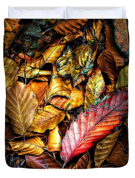 Duvet Cover featuring the photograph Beautiful Fall Color by Meirion Matthias