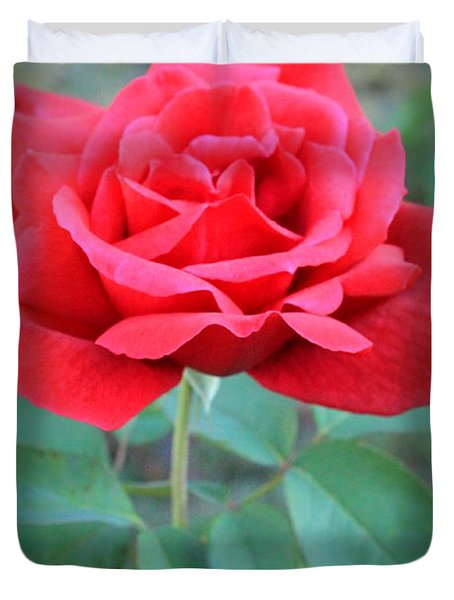 Beautiful Morning Rose  Duvet Cover