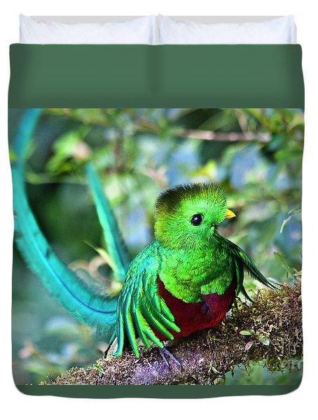 Beautiful Quetzal 5 Duvet Cover by Heiko Koehrer-Wagner