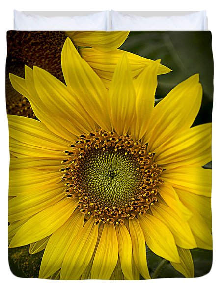 Beautiful Sunflower Duvet Cover
