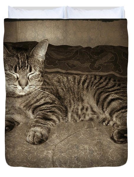 Beautiful Tabby Cat Duvet Cover by Absinthe Art By Michelle LeAnn Scott