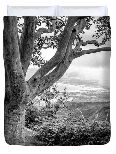 Beautiful Tree Looking Down On A Tropical Valley Duvet Cover by Edward Fielding