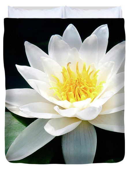 Beautiful Water Lily Capture Duvet Cover by Ed  Riche