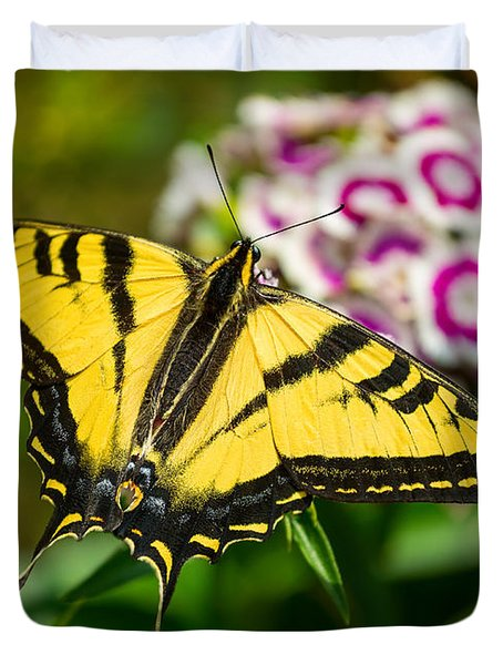 Beautiful Western Tiger Swallowtail Butterfly On Spring Flowers. Duvet Cover by Jamie Pham