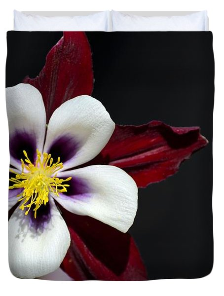 Beautiful White Petal Yellow Stamen Purple Shades Aquilegia Columbine Flower Duvet Cover