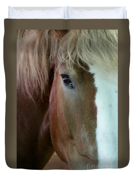 Beautiful Within Him Was The Spirit - 2 Duvet Cover by Linda Shafer