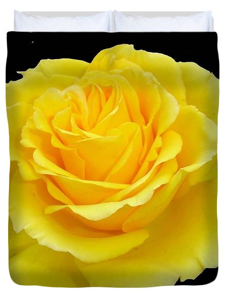 Beautiful Yellow Rose Flower On Black Background  Duvet Cover