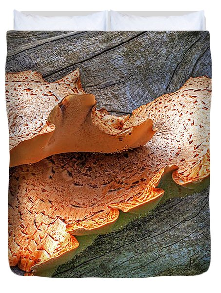 Beauty In Decay - Tree Fungus Duvet Cover