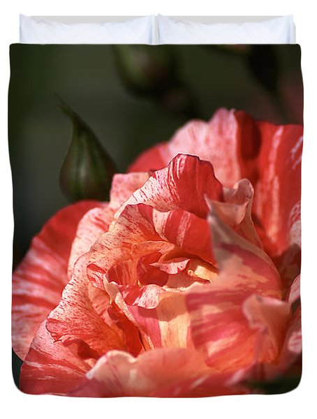 Duvet Cover featuring the photograph Beauty Of Rose by Joy Watson