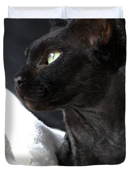 Beauty Of The Rex Cat Duvet Cover
