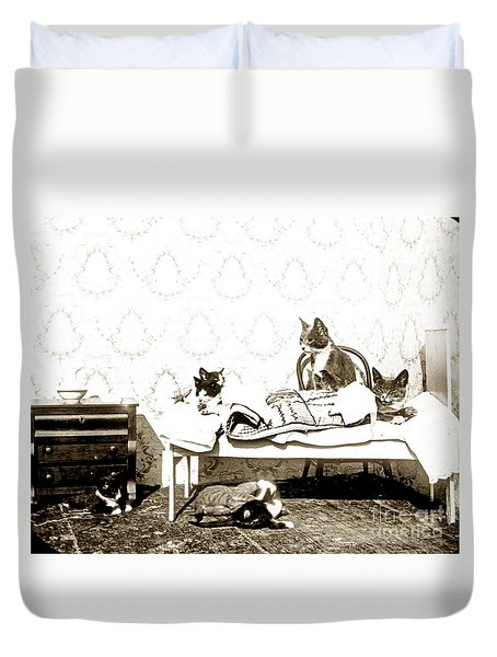 Duvet Cover featuring the photograph Bed Time For Kitty Cats Histrica Photo Circa 1900 by California Views Mr Pat Hathaway Archives