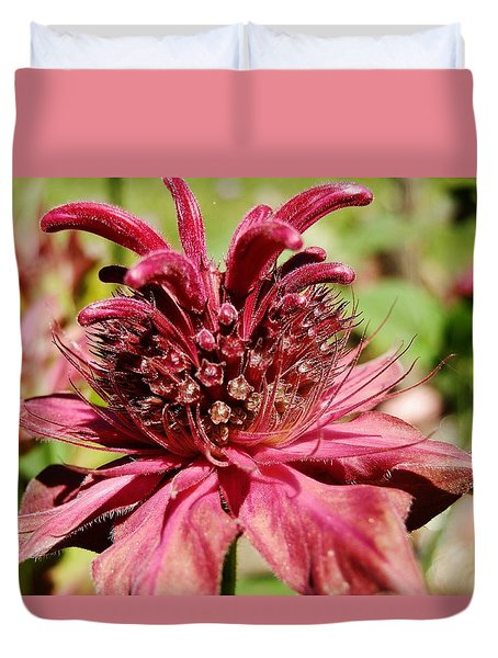 Bee Balm Details Duvet Cover by VLee Watson