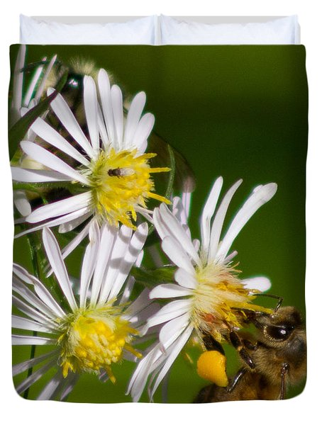 Bee Harvest Duvet Cover