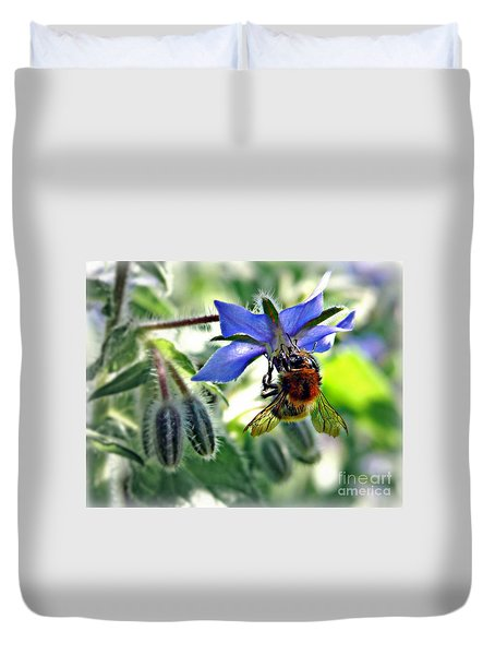 Bee On Borage Duvet Cover by Morag Bates