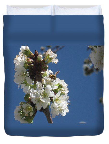 Bee On Cherry Blossoms Duvet Cover
