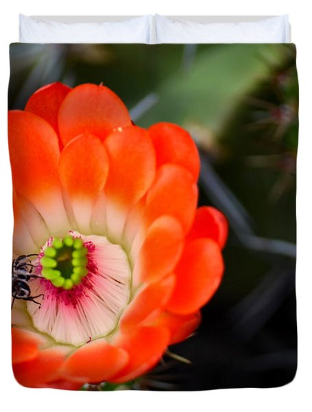 Bee Ware The Thorns Duvet Cover by Deb Halloran