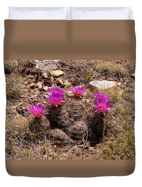 Beehive Cactus Blooms Duvet Cover