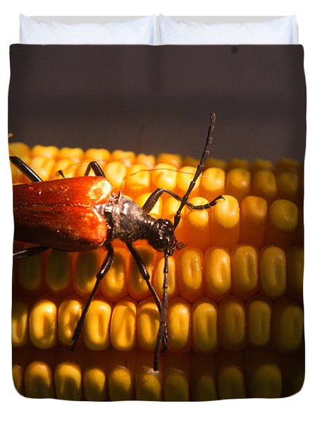 Beetle On Corn Ear Duvet Cover