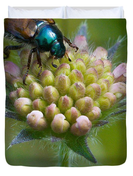 Beetle Sitting On Flower Duvet Cover