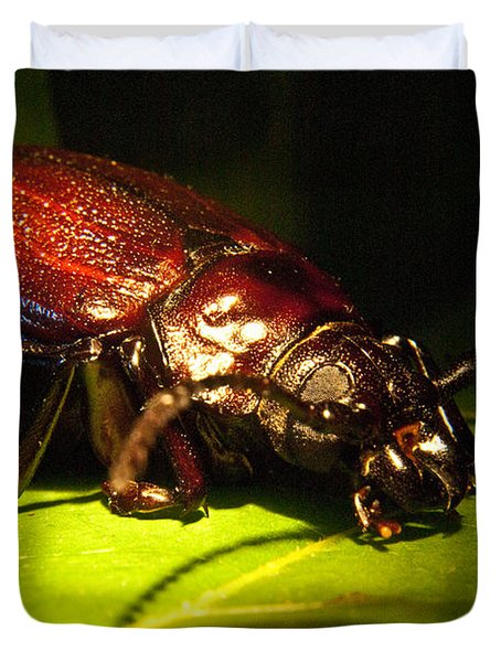 Beetle With Powerful Mandibles Duvet Cover