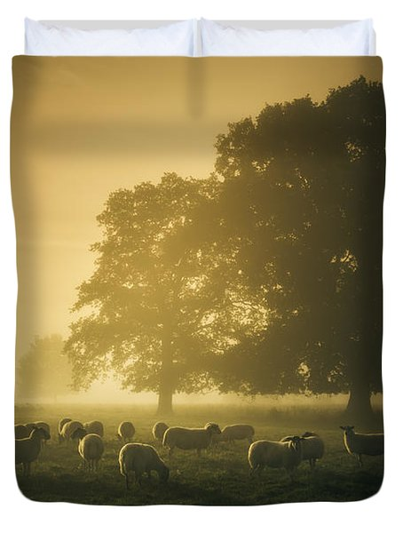 Before Dawn Gathering Duvet Cover