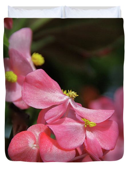 Begonia Beauty Duvet Cover by Ed  Riche