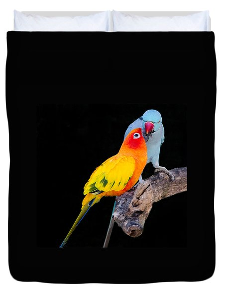 Sun Conure And Ring Neck Parakeet 2 Duvet Cover