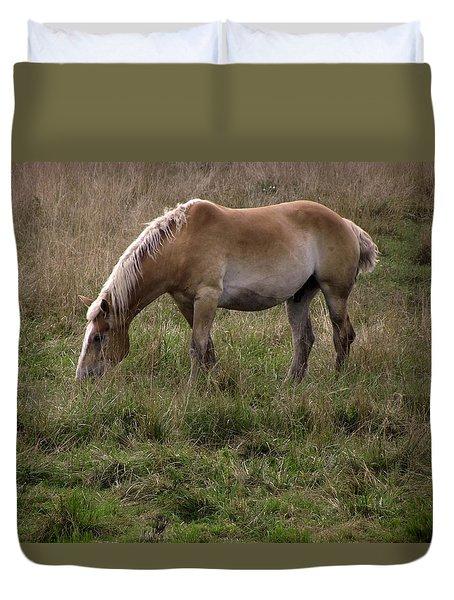 Belgian Draft Horse Duvet Cover by Joyce  Wasser