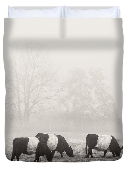 Belted Galloway Cows On Foggy Farm Field In Maine Duvet Cover