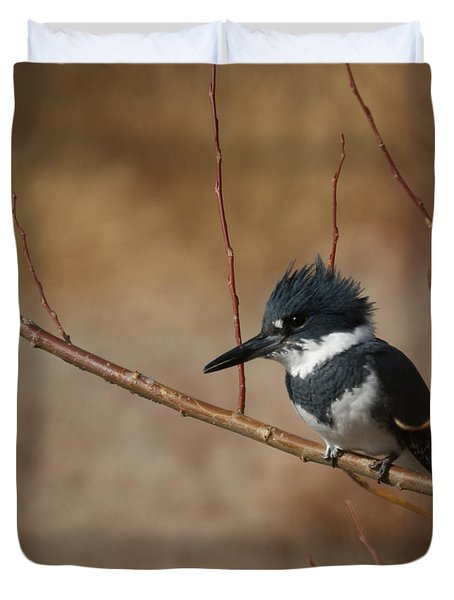 Belted Kingfisher Duvet Cover