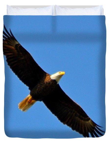 Best Bald Eagle On Blue Duvet Cover by Jeff at JSJ Photography