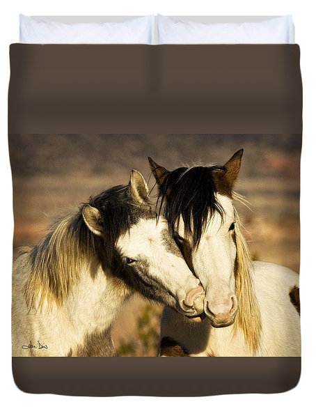 Best Friends 2009 Duvet Cover