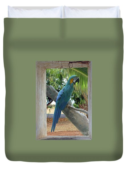 Beyond The Window Duvet Cover by Bob Hislop