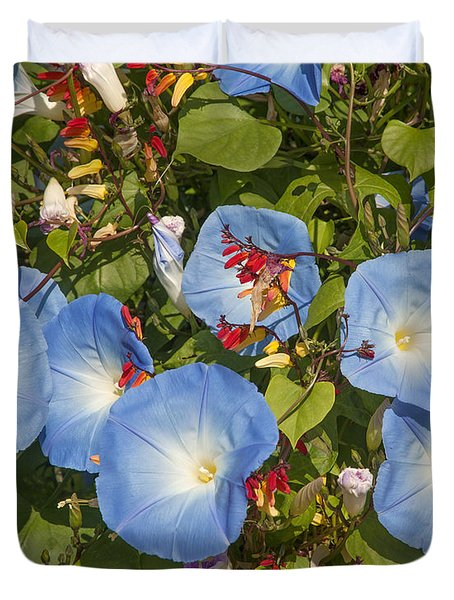 Bhubing Palace Gardens Morning Glory Dthcm0433 Duvet Cover