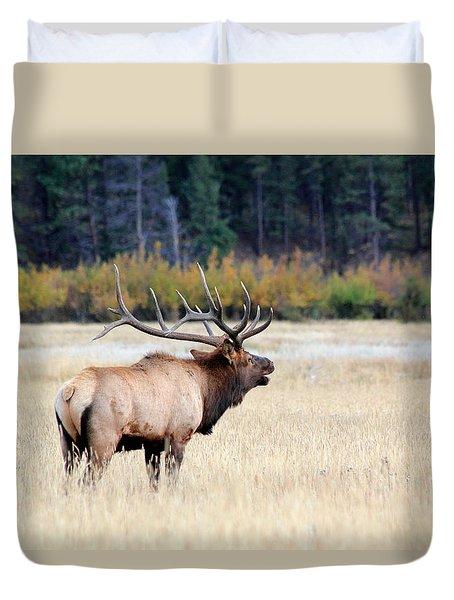 Big Colorado Bull Duvet Cover