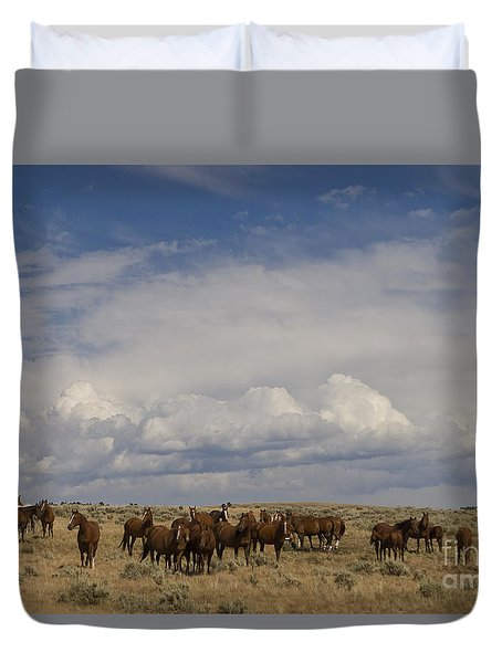 Duvet Cover featuring the photograph Big Horn Brood Mares by J L Woody Wooden