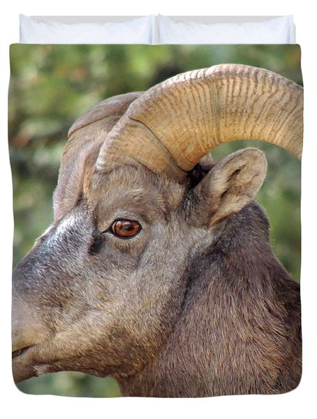 Duvet Cover featuring the photograph Big Horn by Lynn Sprowl