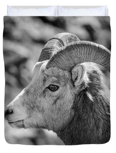 Big Horn Sheep Profile Duvet Cover