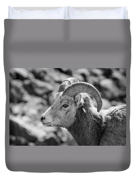Big Horn Sheep Profile Duvet Cover