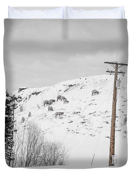 Big Horn Sheep Hinton Hillside Duvet Cover