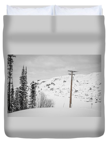 Big Horn Sheep Hinton Hillside Duvet Cover