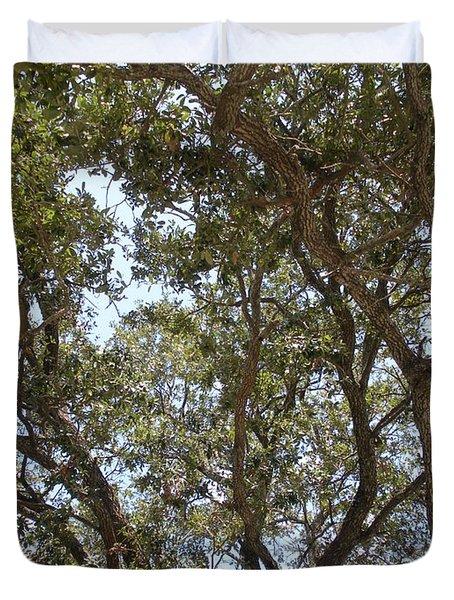 Big Oak Tree Duvet Cover
