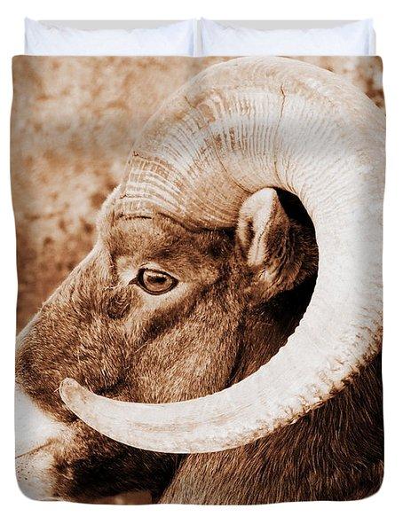 Bighorn Sheep Profile Duvet Cover by Ramona Johnston