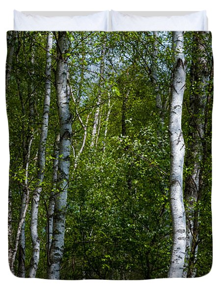 Birch Forest In The Summer Duvet Cover by Hannes Cmarits